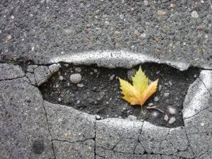 Avoid potholes with help from Becks auto center